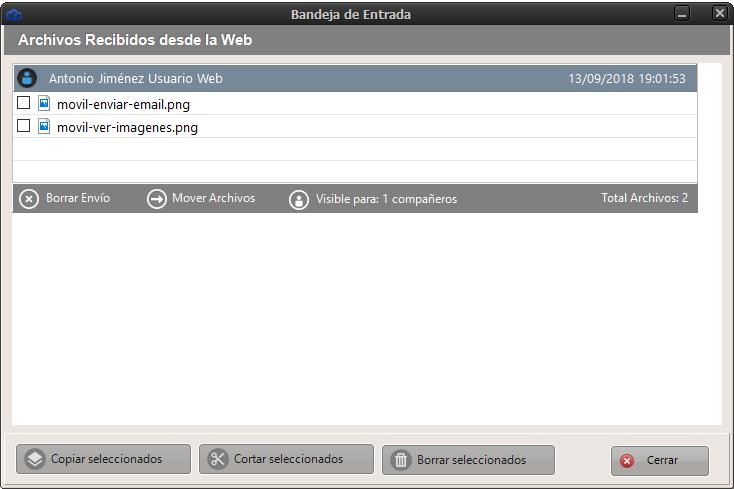 ventana-archivos-recibidos-web
